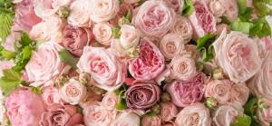 Les fleurs et le parfum