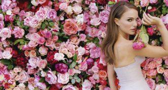 Les notes du parfum Miss Dior