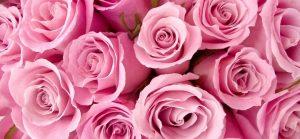 Quels parfums ont une odeur de rose ?