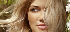 La camomille pour sublimer la beauté de vos cheveux
