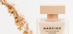 Narciso Poudrée, un parfum de succès