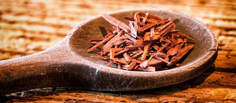 Partons à la découverte du bois de santal !